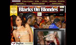 Blacks on Blondes website