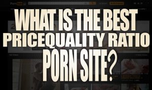 What-is-the-best-pricequality-ratio-porn-site-featured
