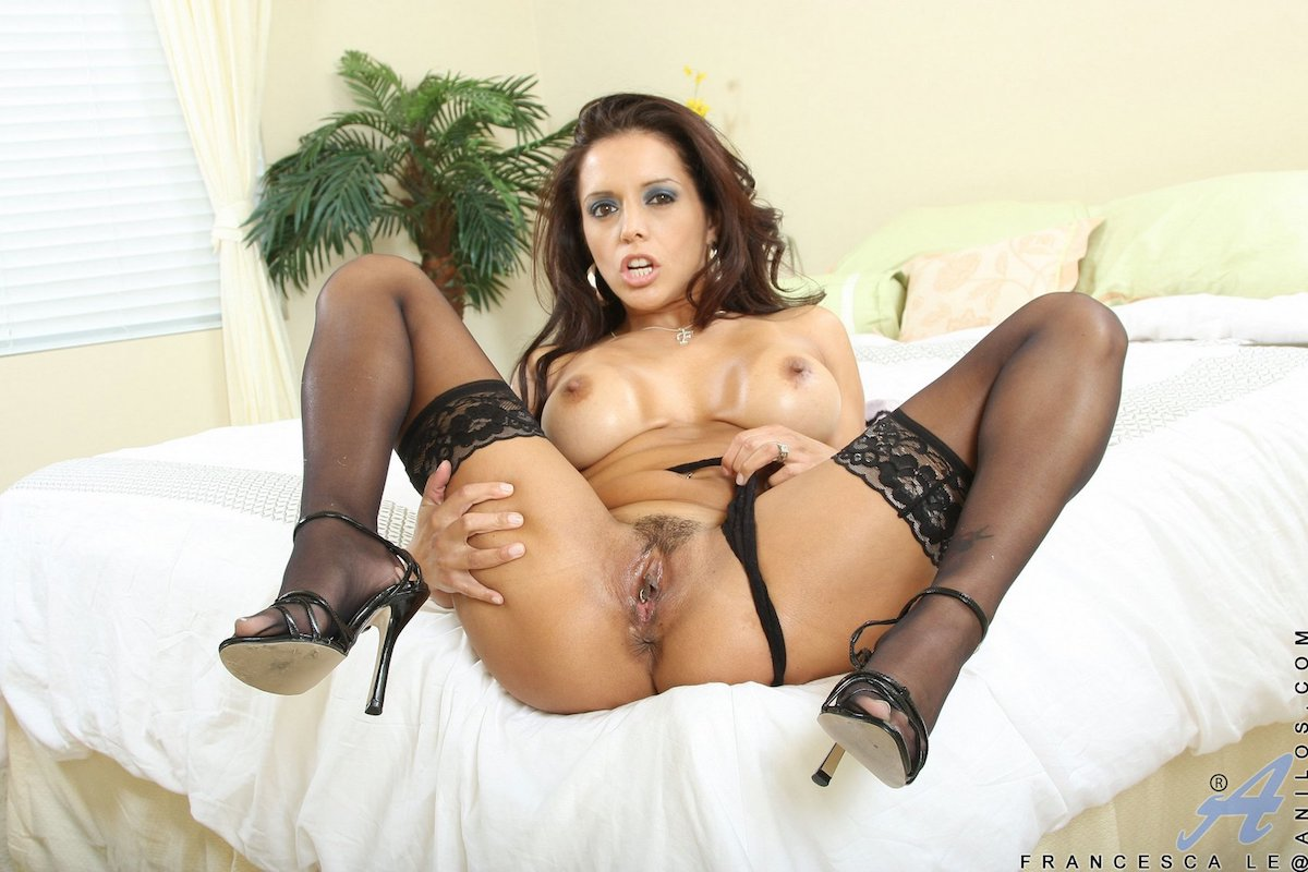 Top 10 brunette pornstars