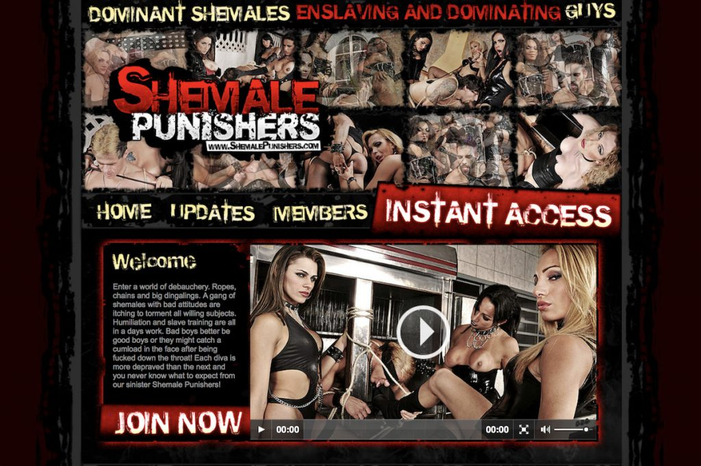 Shemale Punishers
