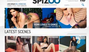 Spizoo porn network