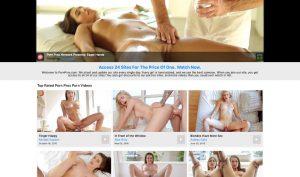 Porn Pros porn network