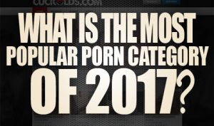 What is the Most Popular Porn Category Of 2017 Logo001