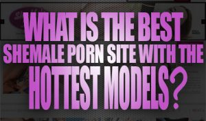 What Is The Best Shemale Porn Site With The Hottest Models Logo001