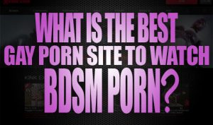 What is the Best Gay Porn Site to Watch BDSM Porn Logo001